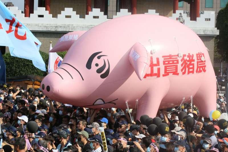 蔡政府宣布解禁含萊克多巴胺美國豬肉進口,讓在野的國民黨「檢到槍」,發起龐大的抗議遊行。(柯承惠攝)