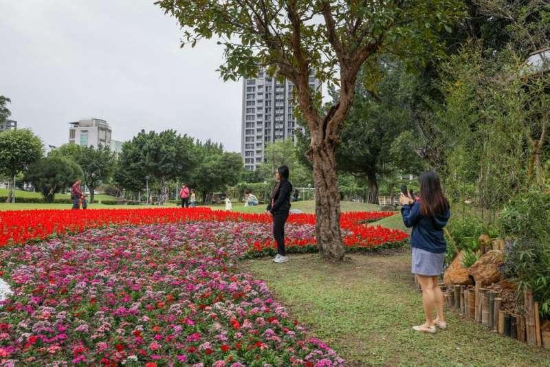 景觀競賽場地-由青年設計規劃設計之花海。(圖/新北市景觀處提供)