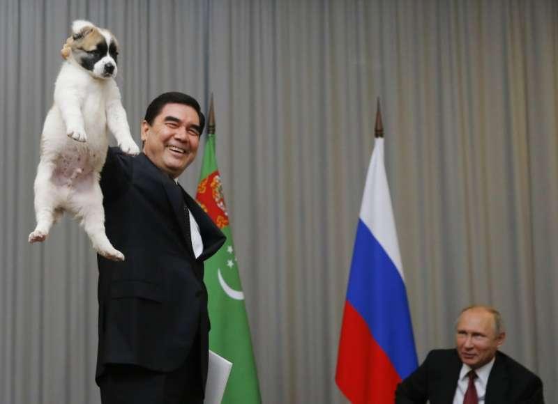 2017年10月,土庫曼總統別爾德穆哈梅多夫(左,Gurbanguly Berdymukhamedov)贈送一隻中亞牧羊犬給俄羅斯總統普京,作為生日禮物。(資料照,AP)