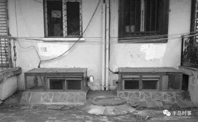 羽毛球掉進廢棄宿舍的地下窗,穿越的離奇故事也從此開始。(圖/網易雲)