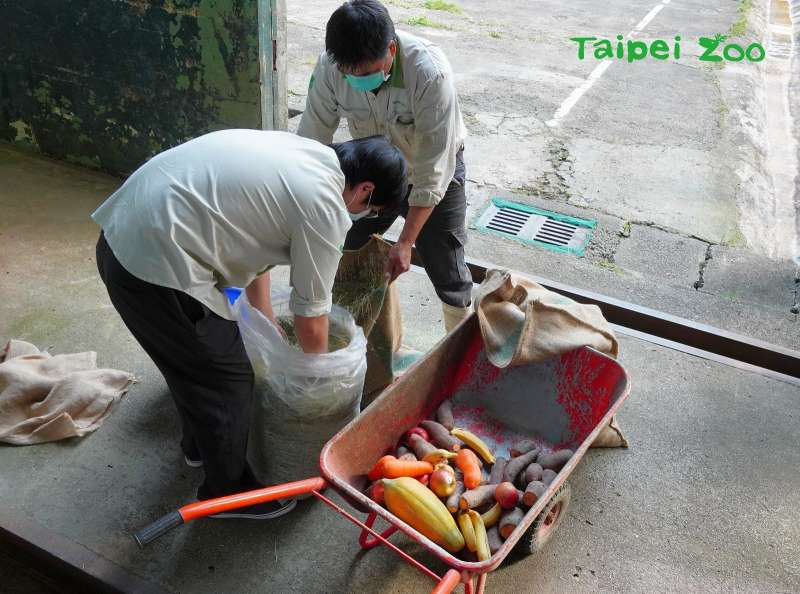 20210215-台北市立動物園幫園內非洲象準備福袋,內裝非洲象喜歡的美味食物。(取自台北市立動物園網站)