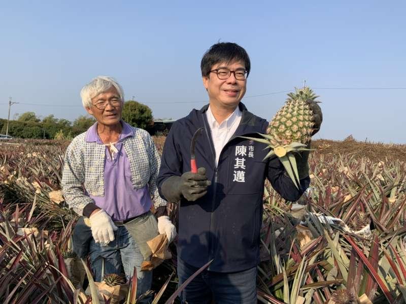陳其邁:全力相挺品質最好的高雄鳳梨,照顧農民不受影響。(圖/高雄農業局提供)
