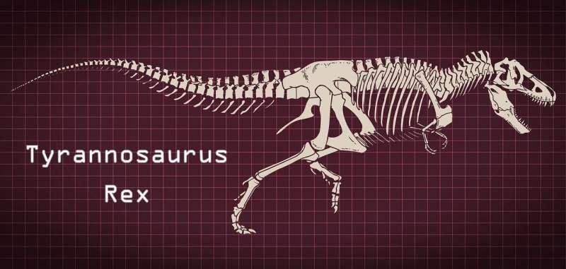 暴龍身長可達150公尺,高約5公尺,為地表上出現過最大型、最兇猛的肉食性動物之一。(by CristianIS@pixabay)