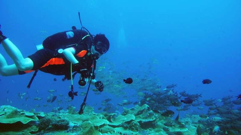 陳其邁接待完帛琉總統,不禁翻出以前到帛琉悠遊海底的潛水照,PO上自己的臉書與臉友分享。(圖/翻攝自陳其邁臉書)