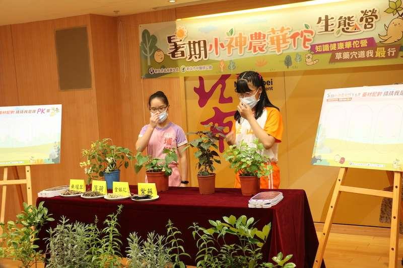 「小神農華佗生態營」教育學童認識常見中藥材原有植物樣貌,培養藥材與植物辨識能力。(圖/李梅瑛攝)