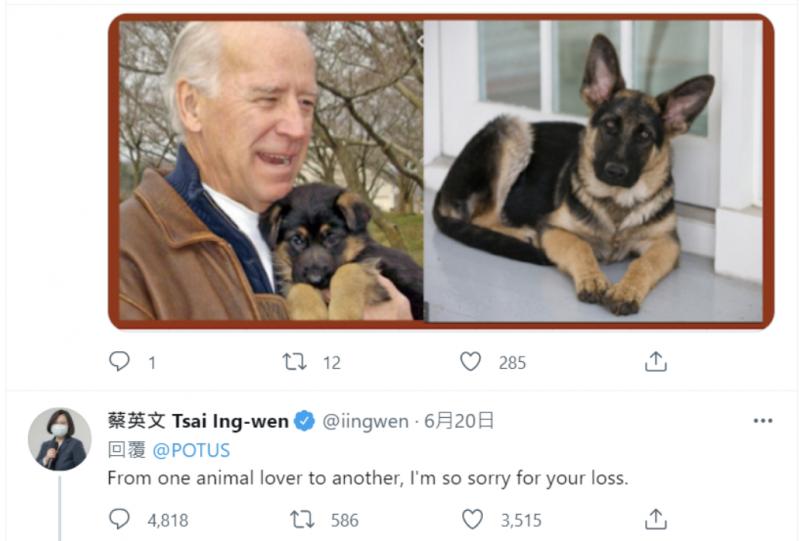 美國總統拜登的13歲愛犬「冠軍(Champ)」於美國時間6/19死亡,蔡總統6/20火速發文深感「遺憾」,這是對國際友人的禮儀也是尊重,原無可厚非。(筆者翻攝President Biden (@POTUS) | Twitter)