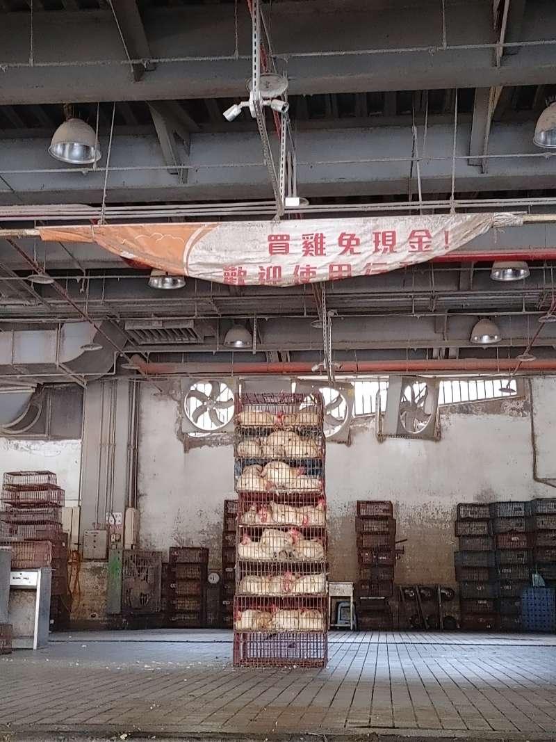 20210721-台北家禽批發市場內仍可看到堆置許多活雞。(洪敏隆攝)