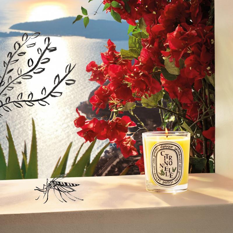 充滿夏日風情的「檸檬草香氛蠟燭」,散發清新而純淨的香氣(圖 / Diptyque@Facebook)