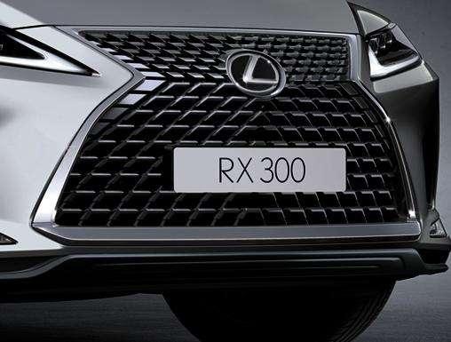 RX 300 曜黑時尚版水箱護罩(圖 / LEXUS 官網)