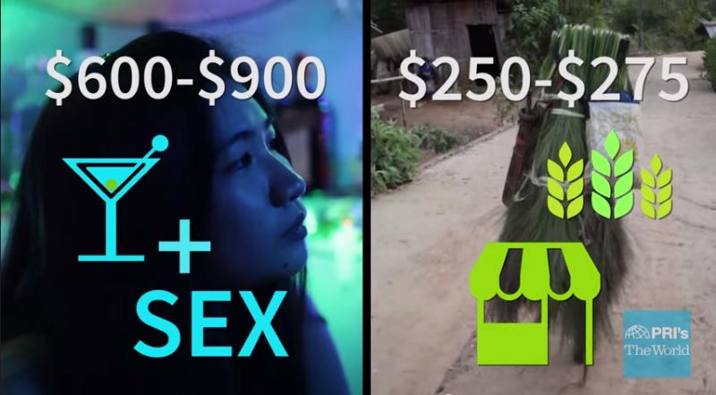 性工作者的收入與鄉村小販比較。(圖/擷取自Youtube)