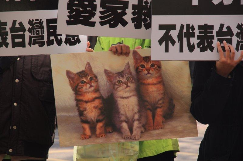 20161128反婚姻平權,搶救台灣希望聯盟演出行動劇。三隻貓代表挺同婚立委段宜康、林靜儀、尤美女。