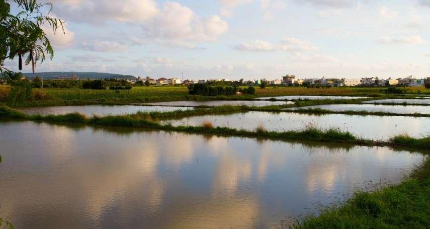 朱淑娟專欄:當農地不斷流失、農業用水再減一成,如何保障永續農業?