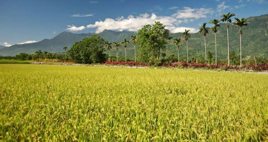蘇煥智觀點:用經濟學原理,體檢農委會「對地綠色給付政策」