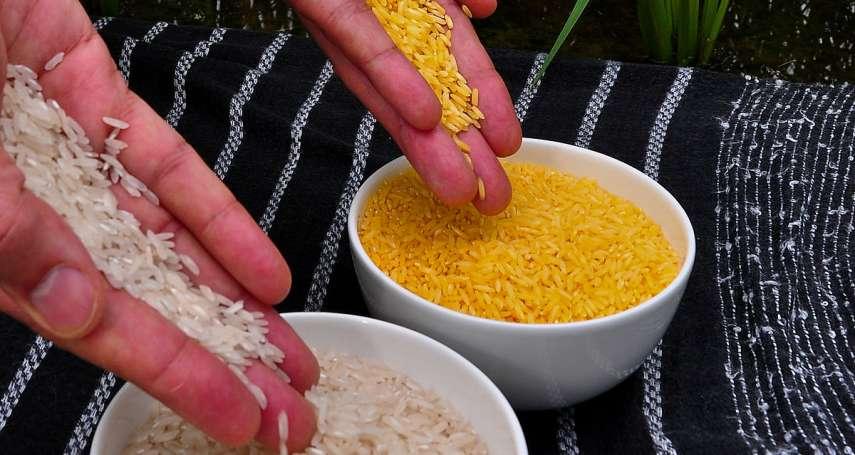 誰扼殺了稻米?兩大兇手─「農協」與「補助款」:島耕作的農業論選摘(上)