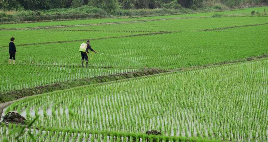 假日農夫也能保?行政院擴大農民職災保險納保對象 須每年實際從農達90天