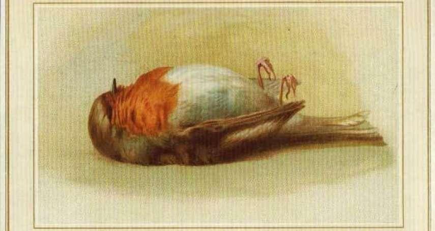 課本絕對沒教的170年聖誕卡片史!為何古早賀卡最愛印垂死的鳥,背後原因讓人大嘆驚奇