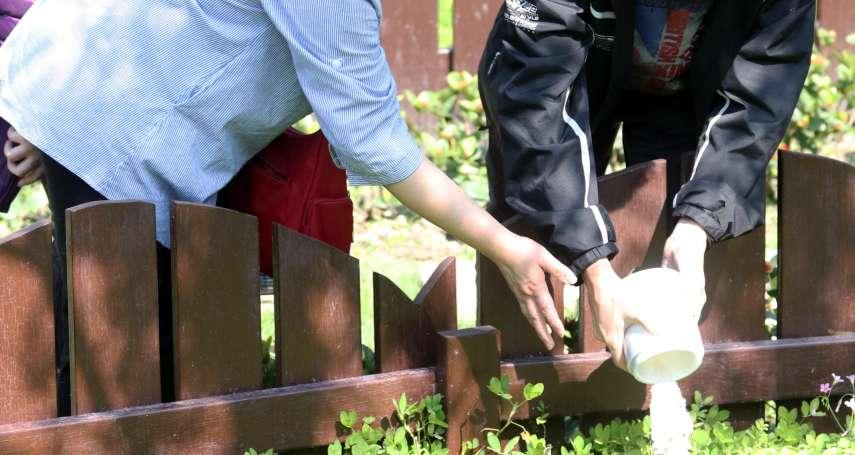 每4人就有1人環保葬!北市推動成績冠全台 寵物、值勤犬都是服務對象