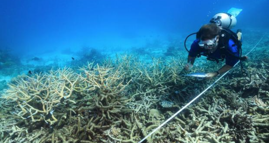 人類嚴重低估海洋吸收的熱量!科學家:地球升溫幅度更難控制、應對危機時間更加緊迫