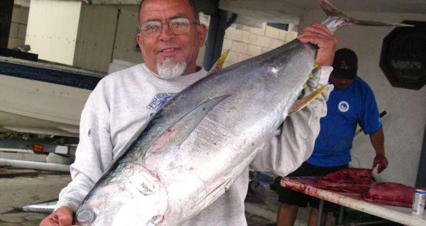 饕客注意!鮪魚產地不同 有毒物質濃度可能差了36倍