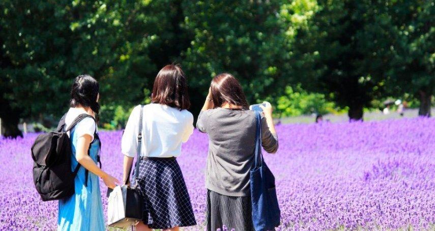 日本歷史最久的薰衣草田!北海道富田農場絕佳攝影點大揭露,文青風伴手禮也別錯過