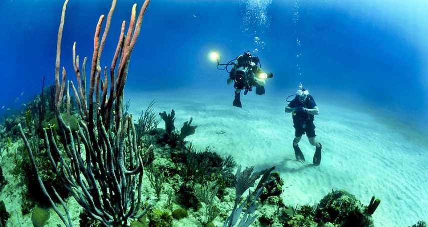 還我們一片美麗的海洋!耗費數月拯救海底美景,「珊瑚農場」志工工作大解密