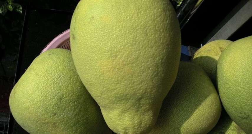 文旦柚子又上市啦!為中秋做好準備,柚子「這樣」挑就對了!若要提升口感,還建議…
