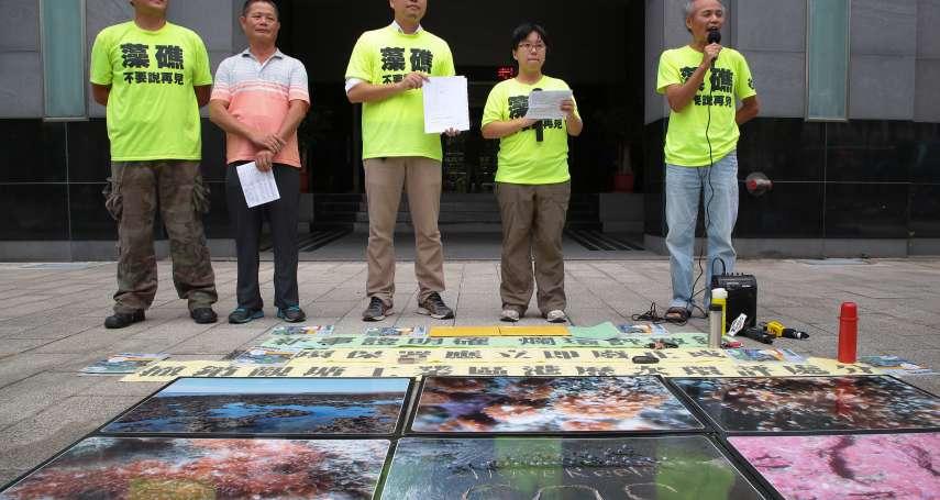 保護大潭藻礁 環團提國際學術期刊背書 要求撤銷觀塘工業區環評