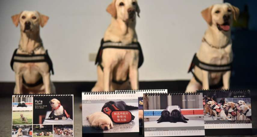 萌翻網友「好想要」 新北警犬x導盲犬限定桌曆義賣