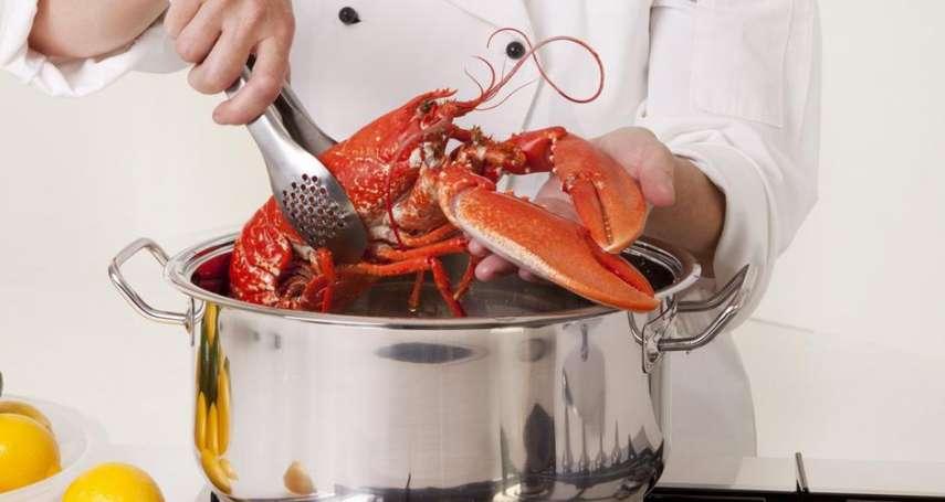 當海鮮不再生猛:瑞士禁止餐廳活煮龍蝦