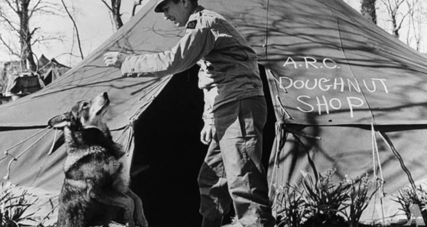 雖然牠是一隻狗,但依舊是戰爭英雄...英國對美國二戰軍犬追授最高勳章