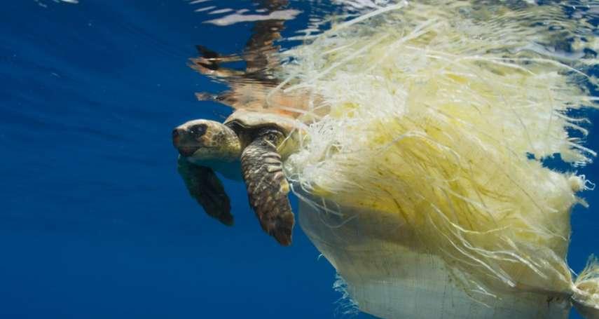 《藍色星球2》效應:BBC宣布停用塑膠餐具,蘇格蘭議會宣布禁用塑膠吸管