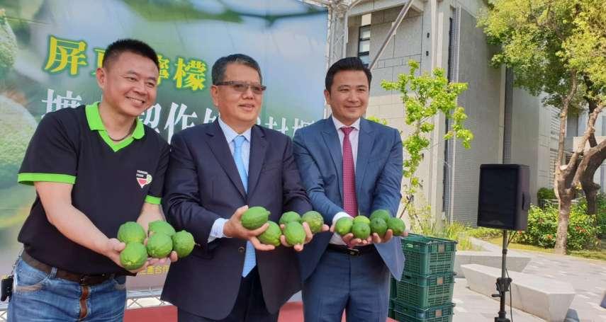 屏東檸檬走出去 火力全開深耕中國大陸市場