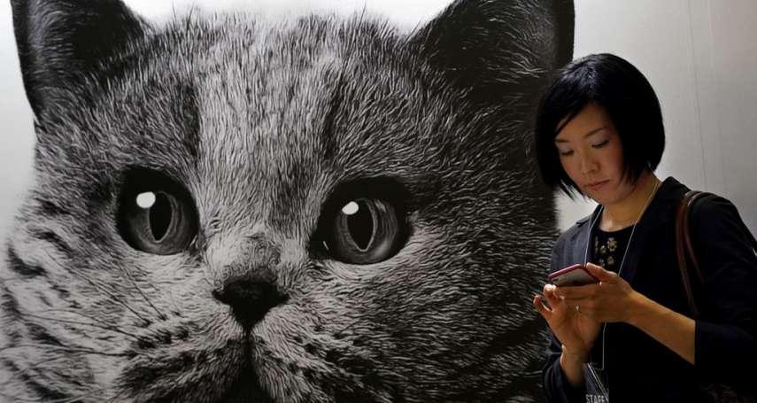 新冠肺炎》貓、狗、老虎……動物也遭殃,全球疫情防控面臨新挑戰