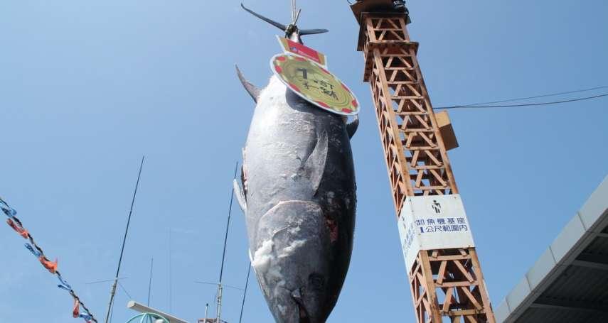 告別鮪魚生魚片:《海鮮的美味輓歌》選摘