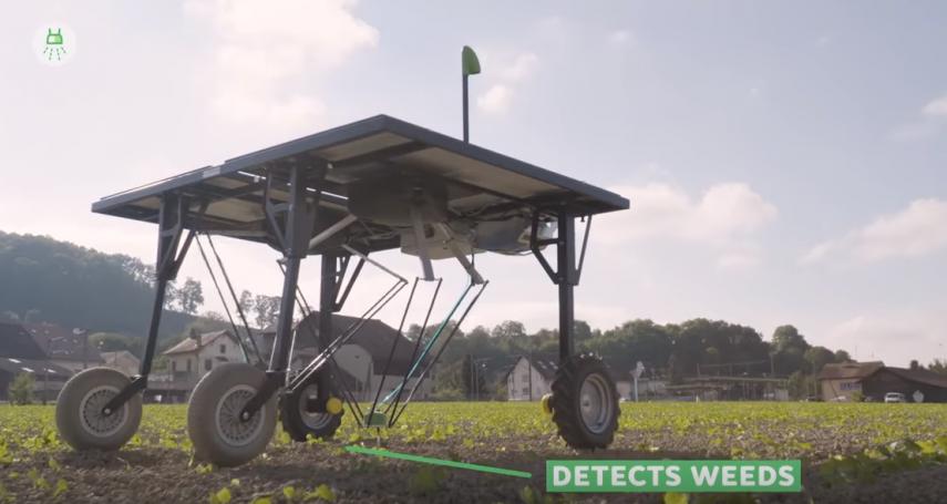 太棒的發明!這機器能精準「對雜草下農藥」、大砍95%藥量,農人、消費者健康都保障!