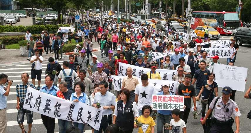農民赴政院抗議鳳梨價格崩盤 民進黨:越喊價格越低,應適可而止