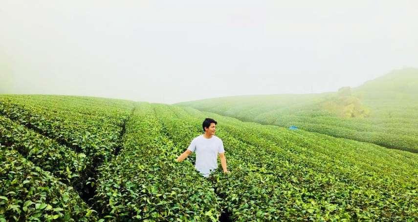 跟著茶旅行 到嘉義找茶趣