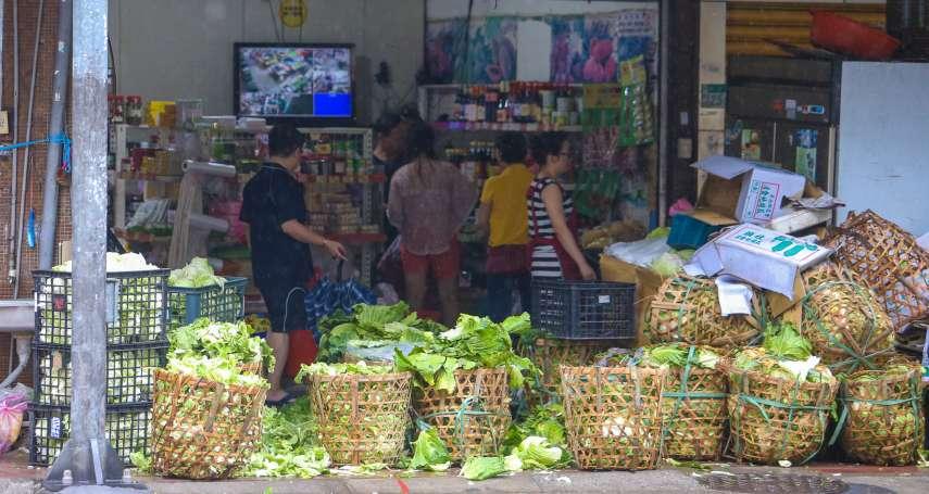 搶救菜農!農委會推高麗菜登記制 每公斤至少6元保證收購