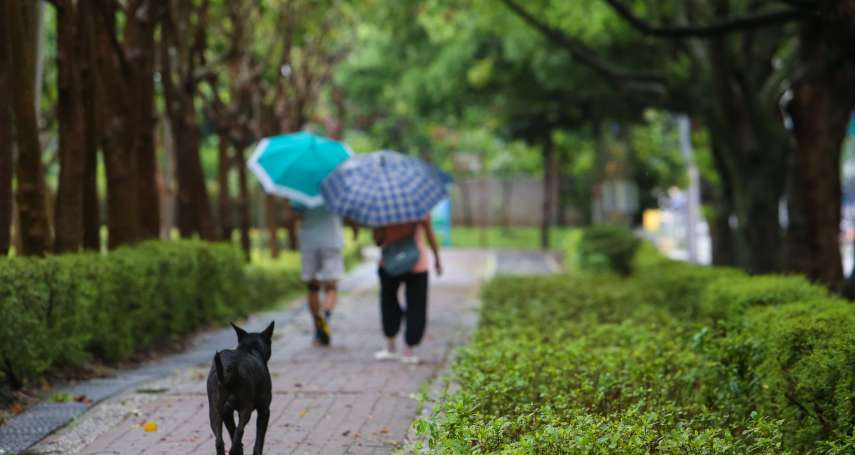 颱風「雲雀」形成!氣象局:直接影響台灣機率低