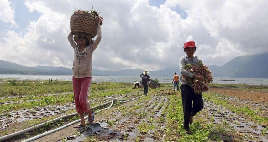 世界第三大稻米生產國,每年卻還要進口300萬噸!印尼糧食危機:農村只見中老年人