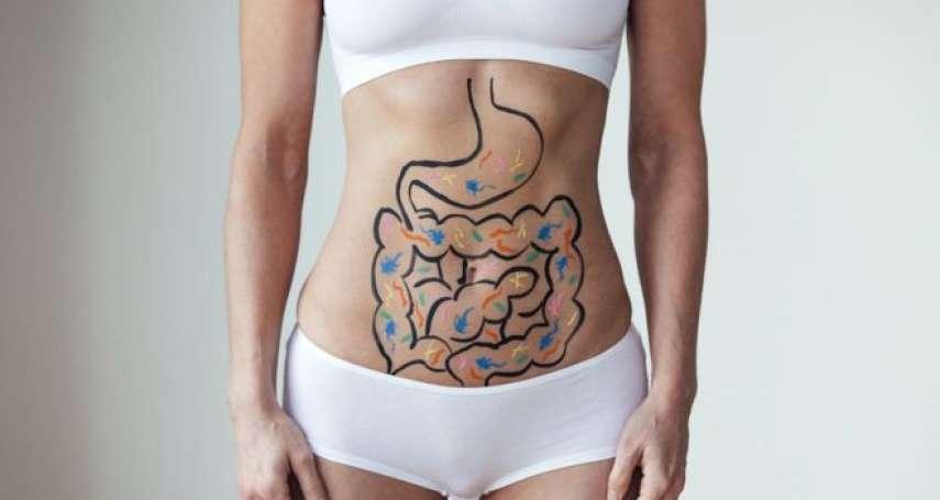 腸道竟為什麼是「第二大腦」?七個令人驚奇的腸道知識