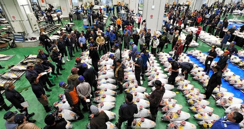 豐洲市場正式開幕 首場鮪魚競拍吆喝聲氣勢十足
