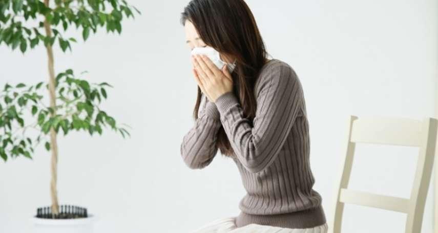 肺一旦變成菜瓜布,會怎樣?醫生警告:呼吸困難、咳嗽不斷…還有可怕症狀,嚴重恐沒命