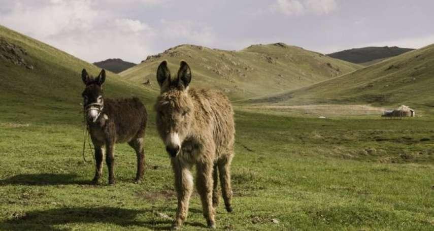 我有一隻小毛驢,牠跑到哪裡去?中國尋找靈丹妙藥,為何中亞國家吉爾吉斯遭殃