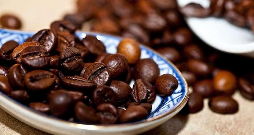 比較差的豆子都拿來做即溶?罐裝咖啡新鮮安全嗎?喝咖啡前,你該先懂啥是「瑕疵豆」!