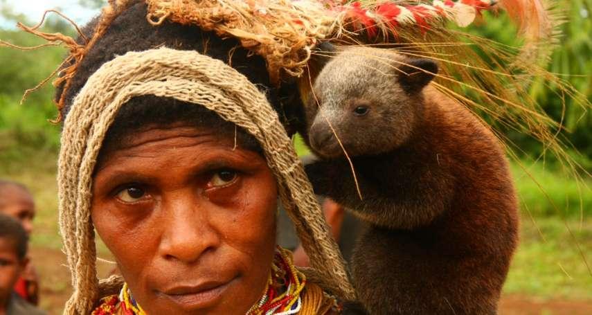 800萬人講842種語言!巴布亞紐幾內亞通用語甚至包含台語字彙