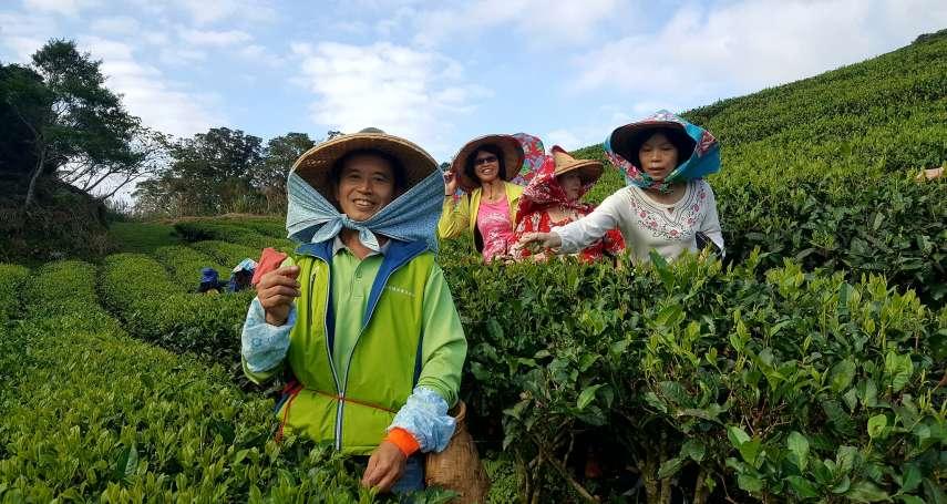 杜宇觀點:台灣農產品的外銷「真相」
