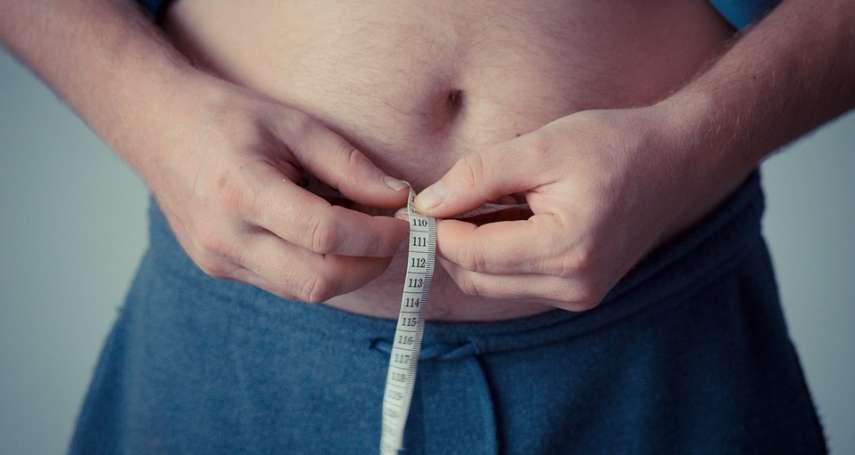 肥胖和腎臟病有關係?長庚研究揭「內臟脂肪」越多,慢性腎臟病風險恐越高!
