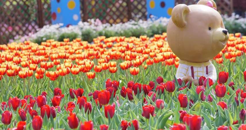 228連假去哪玩?享受異國風情不用出國,士林官邸7萬株鬱金香「花都開好了」就等你!