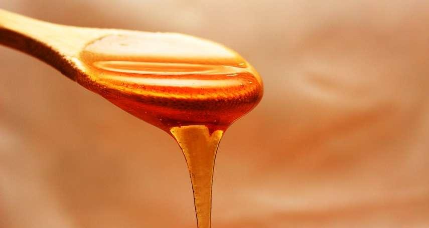 假蜜竟然有4種!大學教授教你用「泡沫」辨認,你吃的到底是糖漿還是真蜂蜜?